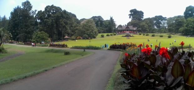astrid garden